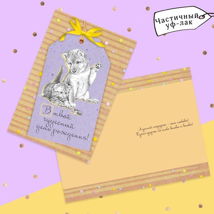Открытка «В твой чудесный День Рождения», пес и кот, частичный УФ-лак, 12 × 18 см