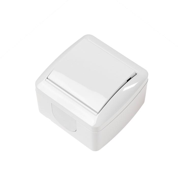 """Выключатель TDM """"Селигер"""", 1 клавиша, 10 А, IP44, открытый, белый"""