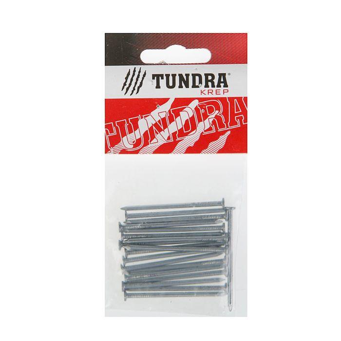 Гвоздь строительный TUNDRA krep, 2.5х50 мм, без покрытия, в упаковке 20 шт.