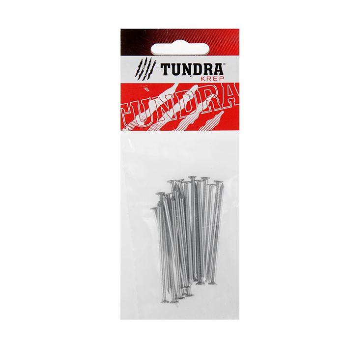 Гвоздь строительный TUNDRA krep, 2.5х60 мм, без покрытия, в упаковке 20 шт.
