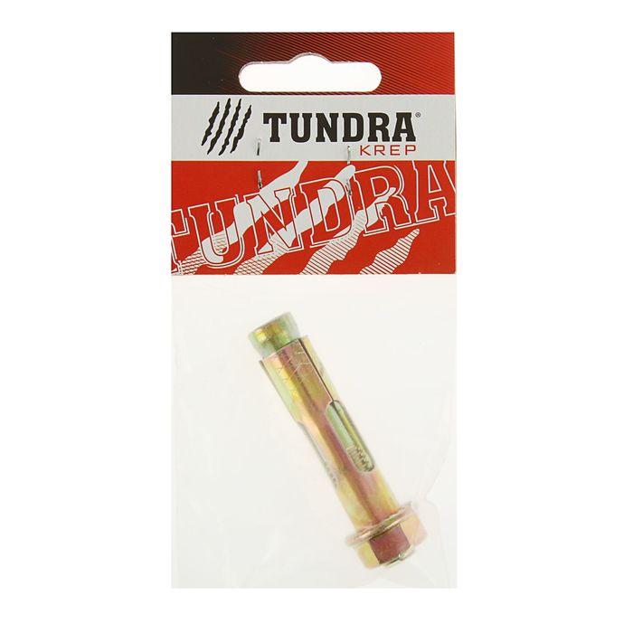 Болт анкерный с гайкой TUNDRA krep, 12х60 мм, в пакете 1 шт.