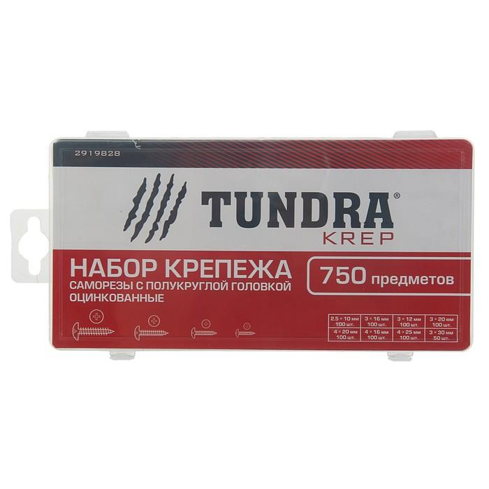 Набор саморезов с полукруглой головкой оцинкованных TUNDRA krep, 750 предметов