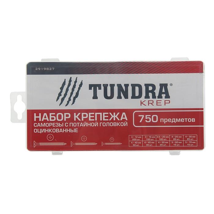 Набор саморезов с потайной головкой оцинкованных TUNDRA krep, 750 предметов
