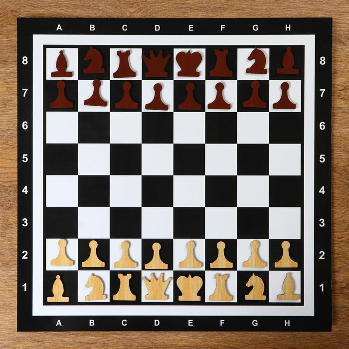 Демонстрационные шахматы на магнитной доске, 60х60 см