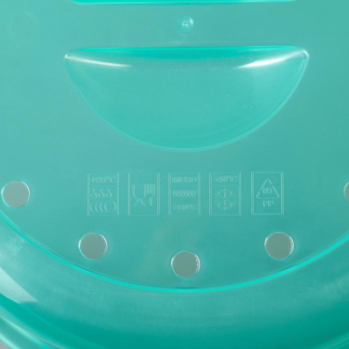 Крышка для СВЧ d=26.4 см Express, цвет прозрачно-мятный