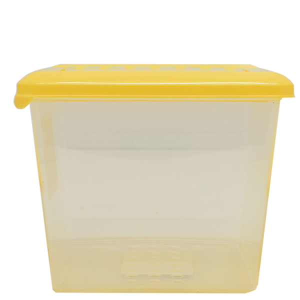 Набор контейнеров Plast Team Pattern 3 шт (2х0.5л, 1х1л)  туманно-голубой