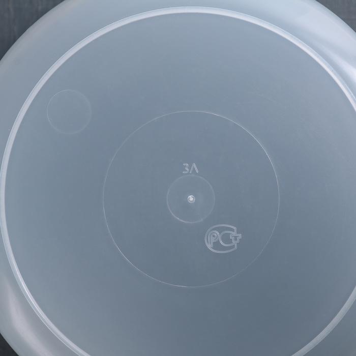 Контейнер 3 л с крышкой, цвет МИКС