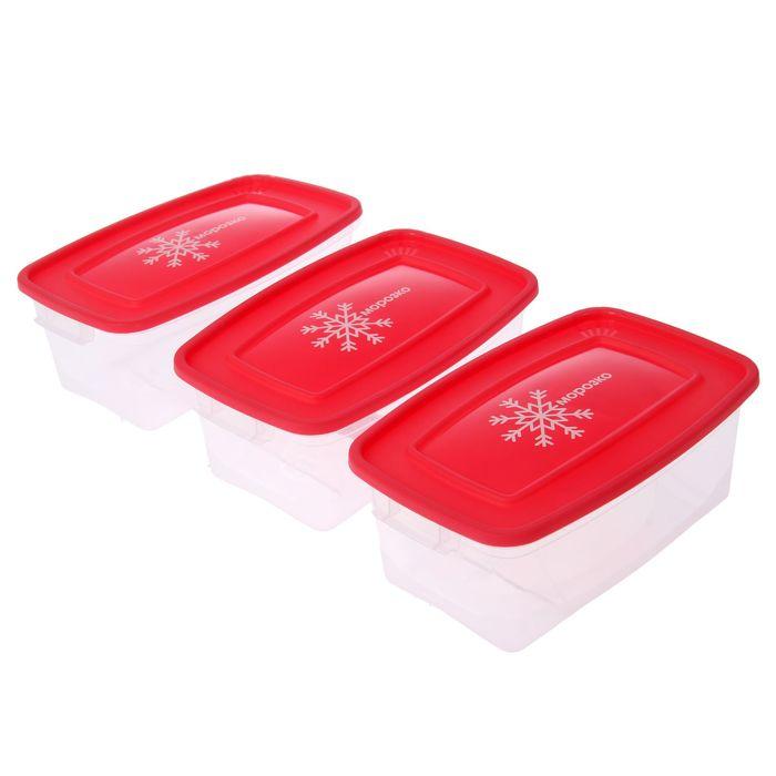 """Набор прямоугольных контейнеров для замораживания продуктов 1 л """"Морозко"""" , 3 шт"""
