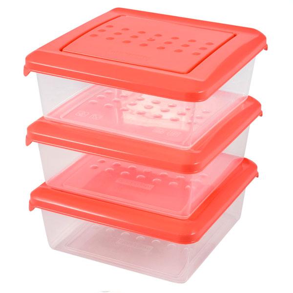 Набор емкостей для хранения продуктов Plast Team Pattern 0,5 л 3 шт