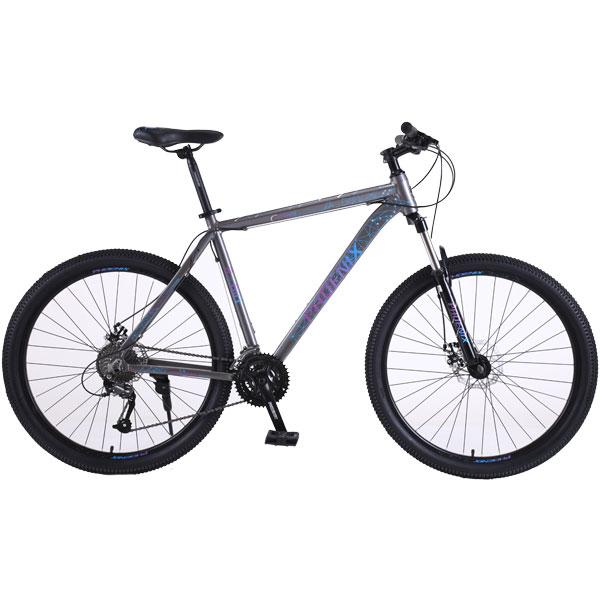Велосипед горный Phoenix Starry (KZ19S2902TP)