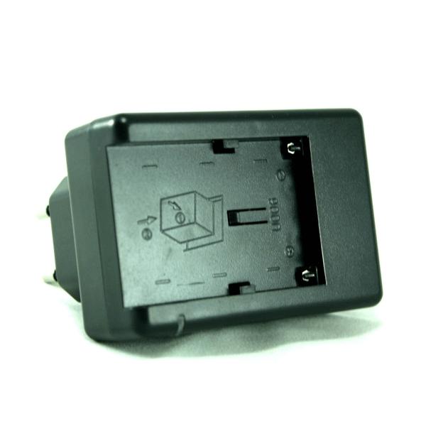 Сетевое зарядное устройство PowerPlant DVOODV2020