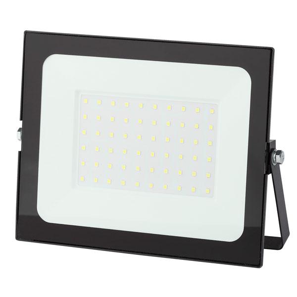Прожектор ЭРА LPR-021-0-65K-070