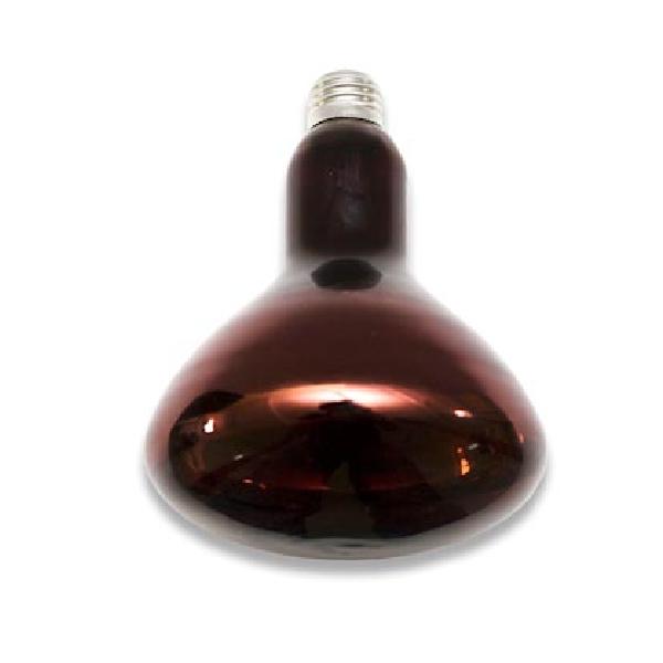Инфракрасная лампочка ЭРА ИКЗК 220-250 R127