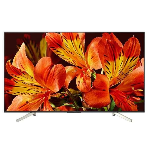 LED телевизор Sony KD55XF8596BR2