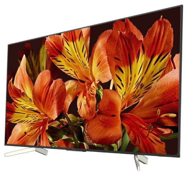 LED телевизор Sony KD49XF8596BR2