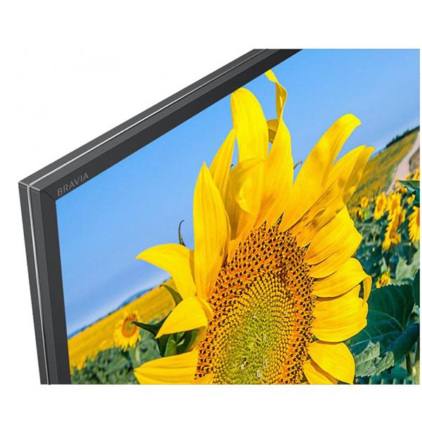 LED телевизор Sony KD49XF8096BR