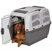 Перевозка для собак