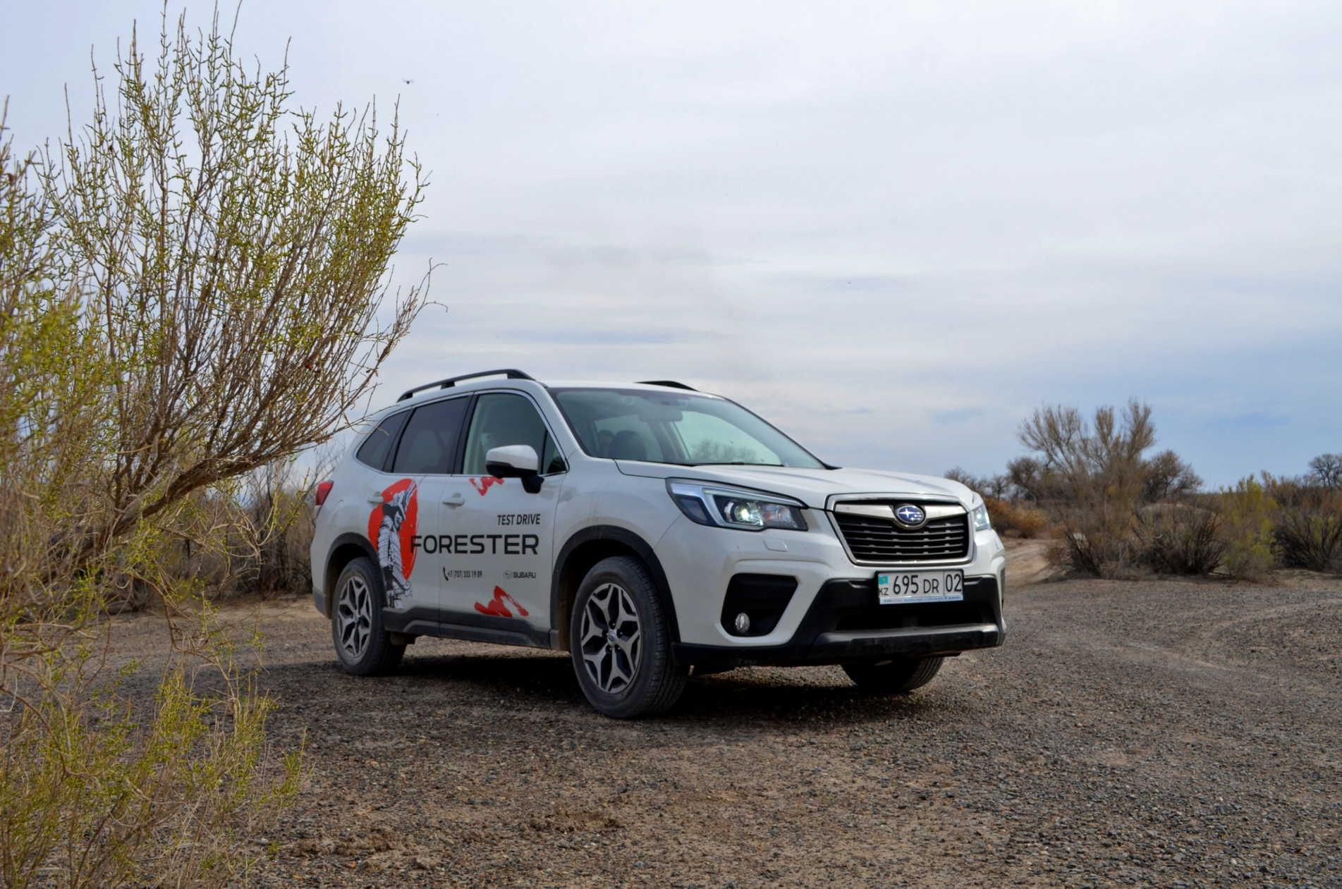 Subaru Forester: Апгрейд «лесника»
